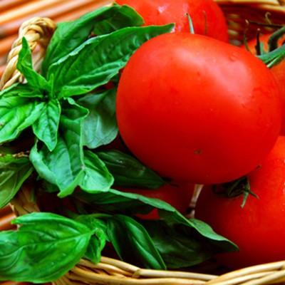 Super Food Tomate - Warum sie so gesund sind - Food Facts gesunde Lebensmittel